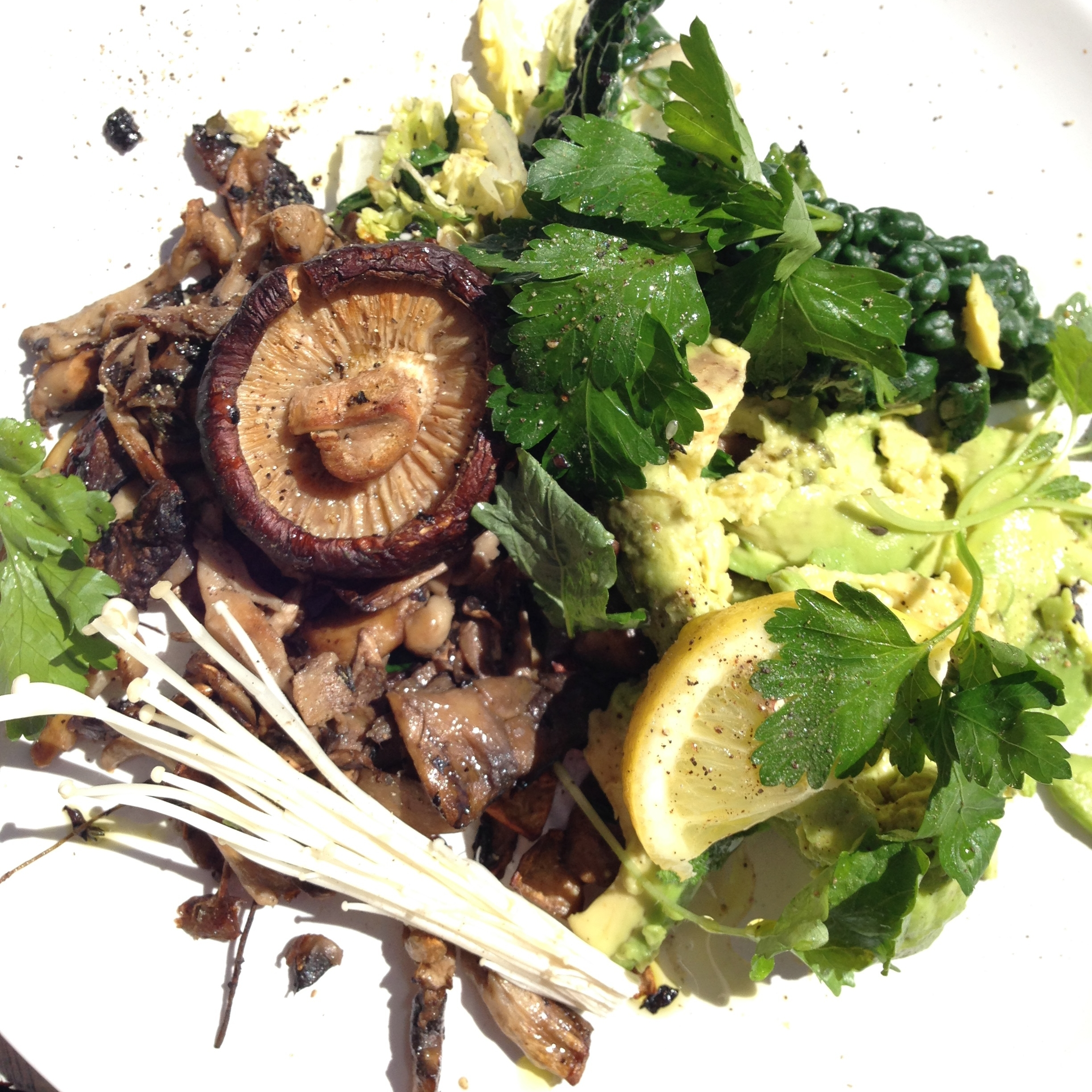 Stimulatte: Assorted mushrooms, avocado and winter green
