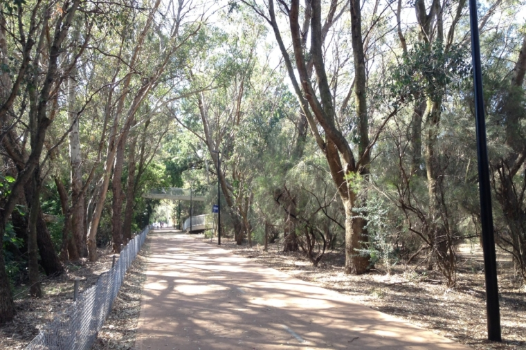 Lake Monger: a mostly shaded, one kilometre strech alongside the Mitchell Freeway