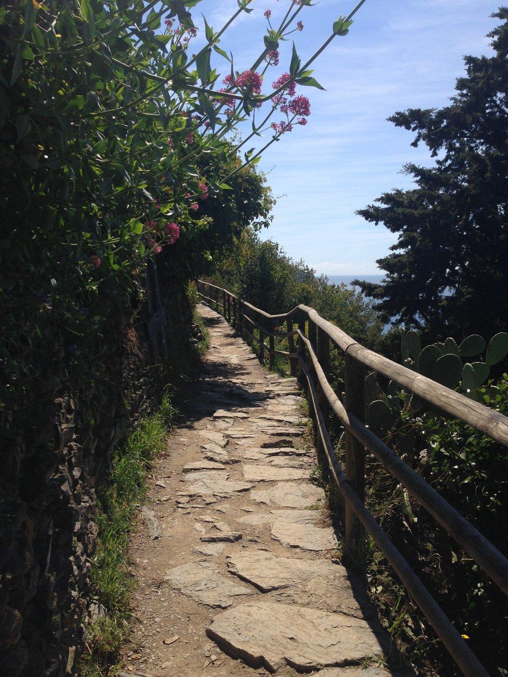 Vernazza to Corniglia: an easy and pretty section.