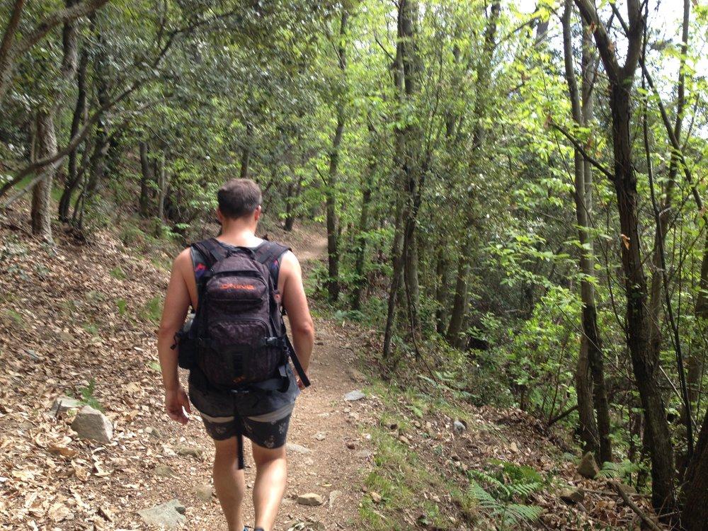 Riomaggiore to Portovenere: the path around Pass of Telegrafo, about 90 minutes before Campiglia. Easy!