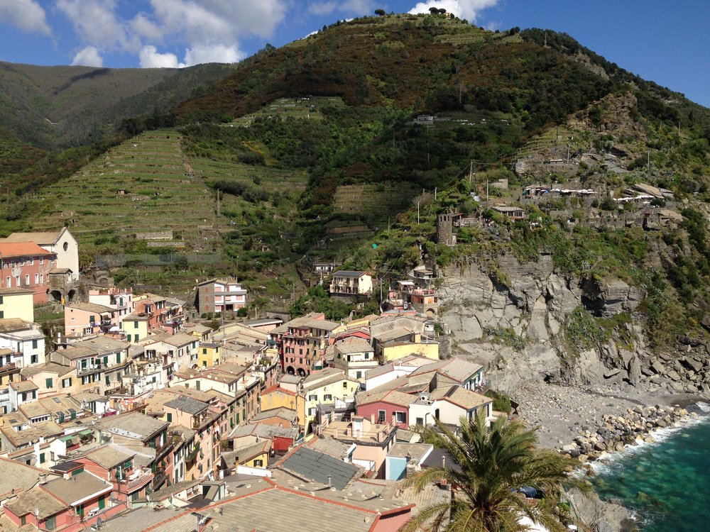Vernazza: the trail roughy follows the power line before going into the forest (top right).