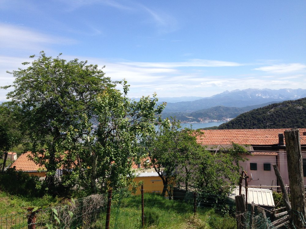 La Spezia surrounds: as viewed from the path into Campiglia.