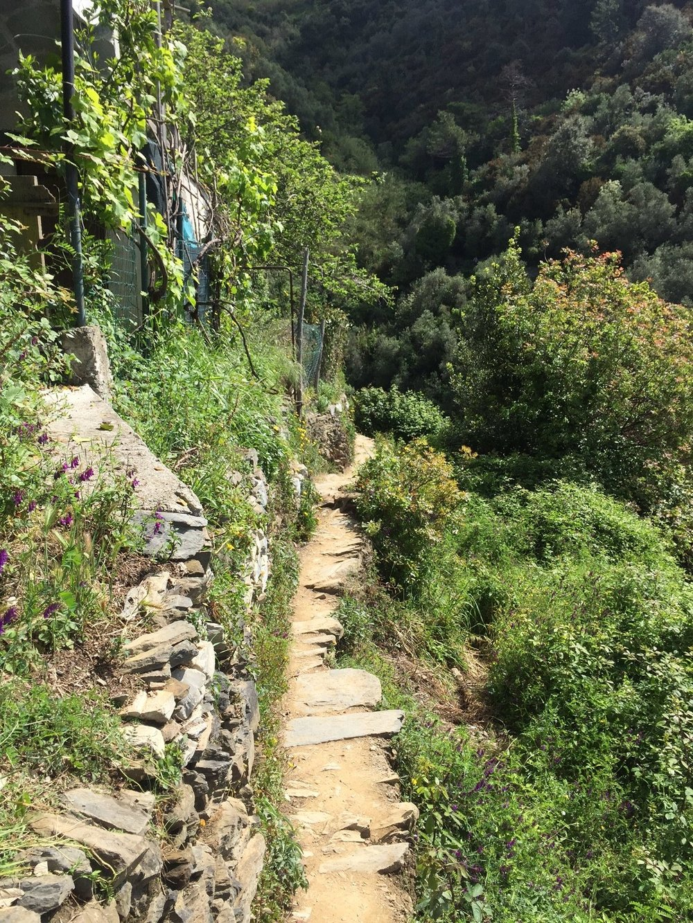 Monterosso-Vernazza: you'll be walking single file.