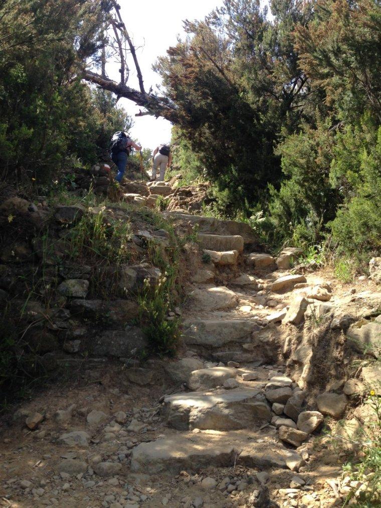 Riomaggiore: the steps close up.